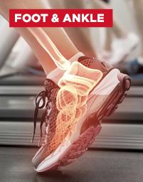 Fuß - und Sprunggelenk