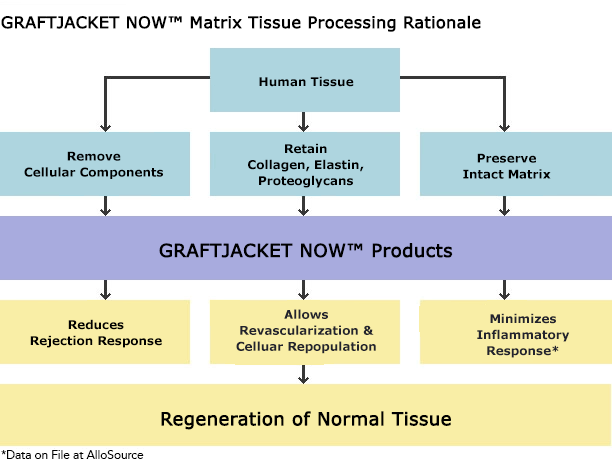 Graftjacket Now, Matrix Tissue Processing Rationale
